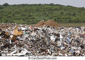 um, landfill, local