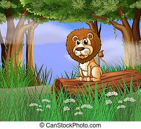 um, leão, sentando, ligado, um, tronco