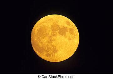 um, lua, em, âmbar, color.
