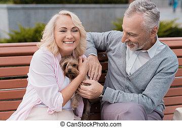 um, par ancião, é, andar, em, a, quadrado, com, dela, pequeno, dog., são, abraçando, um, doggie