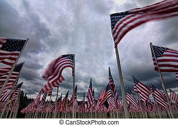 um, patriótico, arranjo, de, bandeiras americanas, representando, caído, soldados, com, cada, indivíduo, flag.