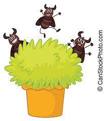 um, planta, em, um, pote, com, três, sorrindo, baratas