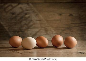 um, poucos, ovos, ligado, a, madeira