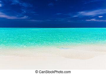 um, vibrante, tiro, de, claro, vazio, bonito, praia tropical