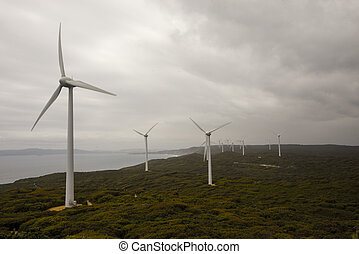 um, visão cênica, de, albany, parques eólicos