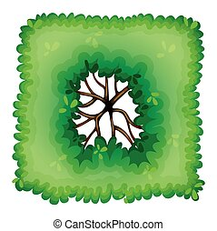 um, vista aérea, de, um, planta