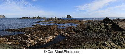 um, zona, de, maré baixa, durante, a, verão, maré baixa, ligado, a, ilha, de, medny, ligado, um, verão, dia ensolarado