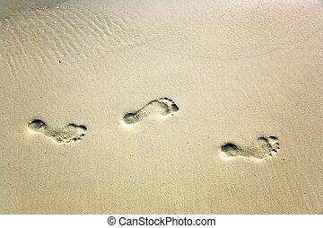 umano, adulto, orma, in, il, bella sabbia, spiaggia