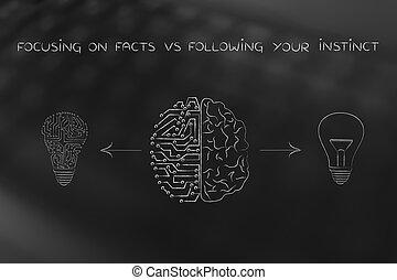 umano, &, circuito, cervello, detenere, differente, idee, fatti, vs, sentimenti