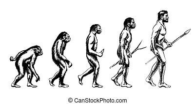 umano, evoluzione, illustrazione