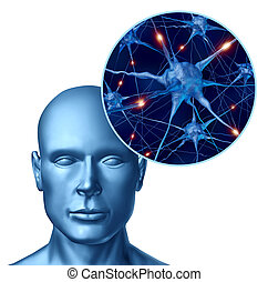 umano, intelligenza, con, attivo, neurons
