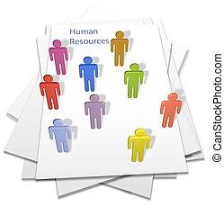 umano, persone affari, lettera, pagina, risorse