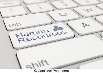 umano, -, risorse, white-blue, tastiera