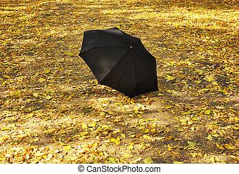 umbrella in a park