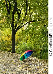 Umbrella in the autumn park
