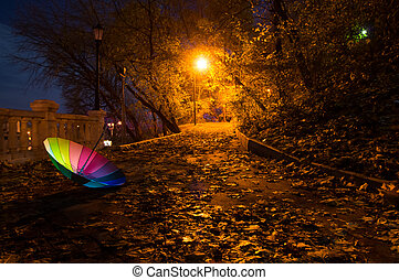 Umbrella in the night autumn park