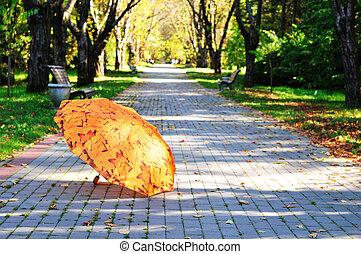 Umbrella in the park