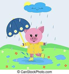 umbrella., mumps, 雨