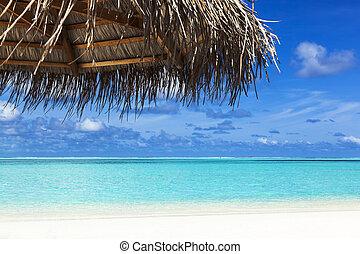 umbrella on the beach tropical sea
