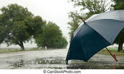 Umbrella On The Road Under Rain, Surface Level