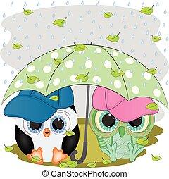 umbrella., pingüim, coruja, sob