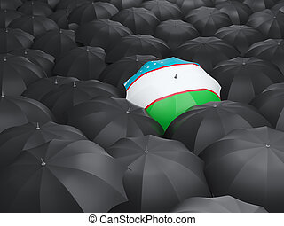 Umbrella with flag of uzbekistan