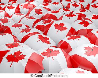 Umbrellas with flag of canada