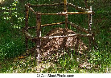 umgeben, ameisenhaufen, zaun, wald