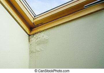 umidade, teto, logo, danificado, telhado, água, janela