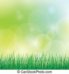 ummer, fundo, com, grama verde