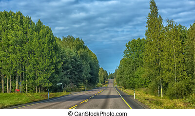ummer highway with trees on the sides