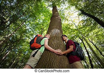 umwelt, conservation:, junger, wanderer, umarmen, großer baum