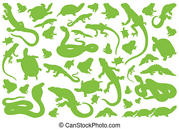 umwelt, reptil, vektor, amphibie