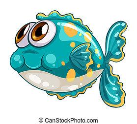 un, burbuja, pez