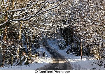 un, camino de país, con, árboles, cubierto de la nieve,...