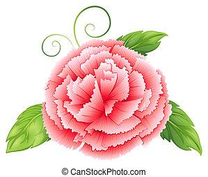 un, clavel, flor rosa, con, hojas