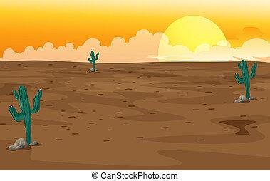 un, desierto