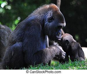 un, el amor de la madre