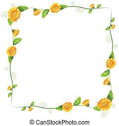 un, frontera, con, naranja florece