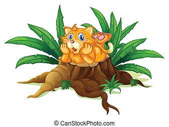 un, gato, sobre, un, tocón, con, hojas