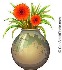 un, grande, olla, con, un, planta que florece