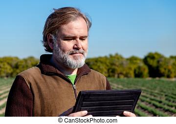 un, granjero, miradas, y, usos, el suyo, tableta, en, el...