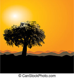 un, guapo, árbol