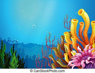 un, hermoso, vista, debajo, el, mar