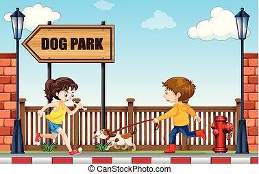 un, hombre caminar, perro, a, parque perro
