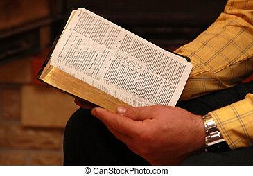 un, hombre, lee, el, biblia