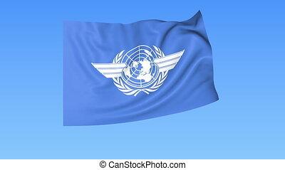 UN International Civil Aviation Organization ICAO flapping...