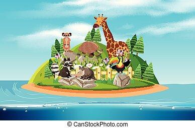 un, isola, e, esotico, animali