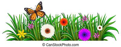 un, jardín, con, florecer, flores, y, un, mariposa