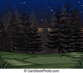un, misterio, bosque, oscuridad, noche